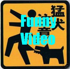 funnyvideo
