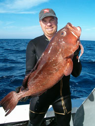 Asian Grouper 89