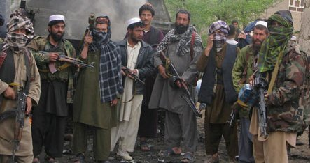 talibaninsurgents