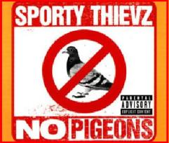 nopigeons