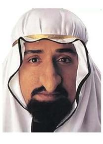 sheikhfagincostume