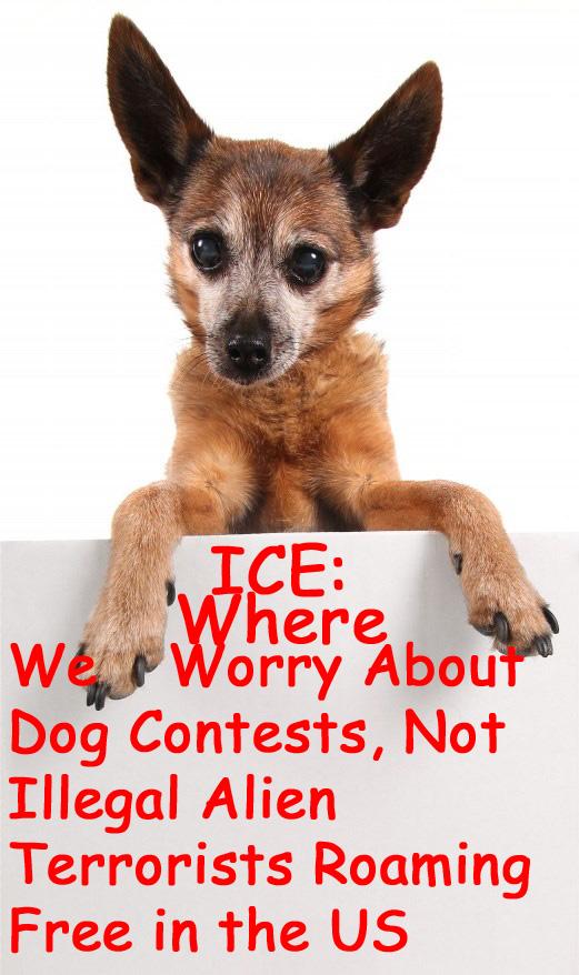 icedogsign2